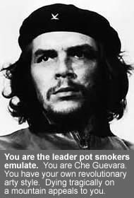 You are the leader pot smokers emulate. You are Che Guevera. You have your own revolutionary arty style. Dying tragically on a mountain appeals to you.